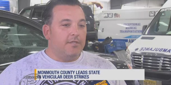 County Line Auto >> Aasp Nj Body Shop Featured In Local Tv News Piece On Deer Hits